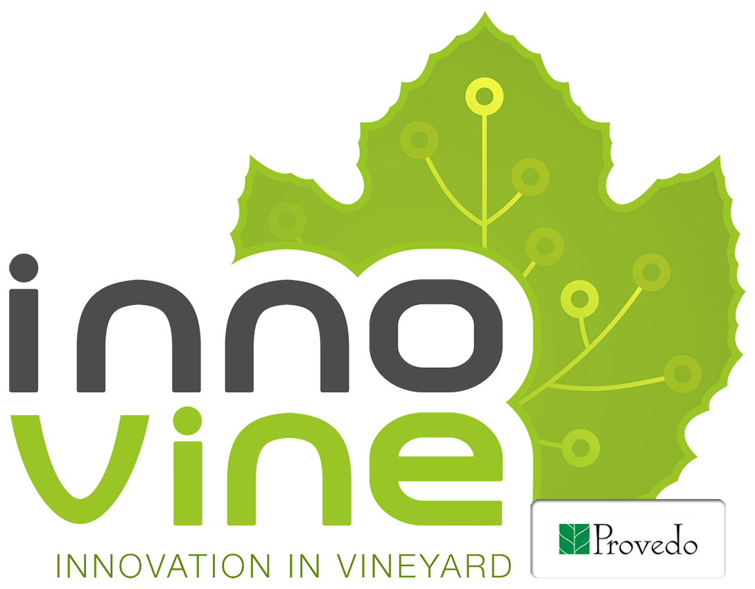 innovine innovation in vineyard provedo