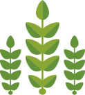 hojas provedo