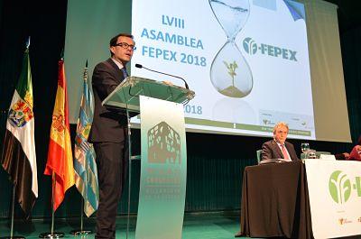 asamblea-general-fepex